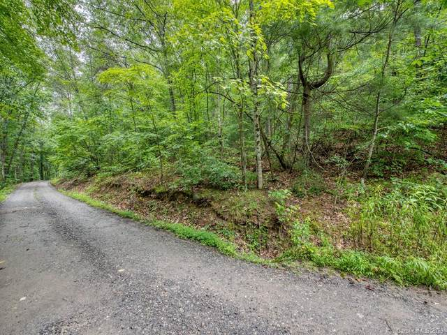 Lot #1 Mary Ruth Way, Clyde, NC 28721 (#3589299) :: Miller Realty Group