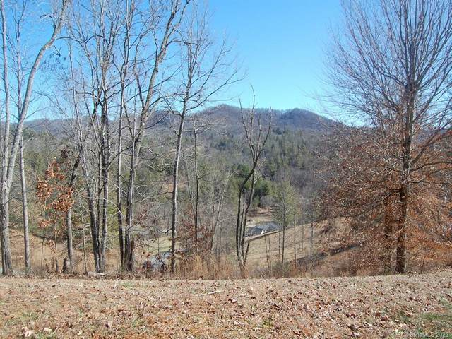 111 Clear View Drive, Mars Hill, NC 28754 (#3589367) :: Homes Charlotte