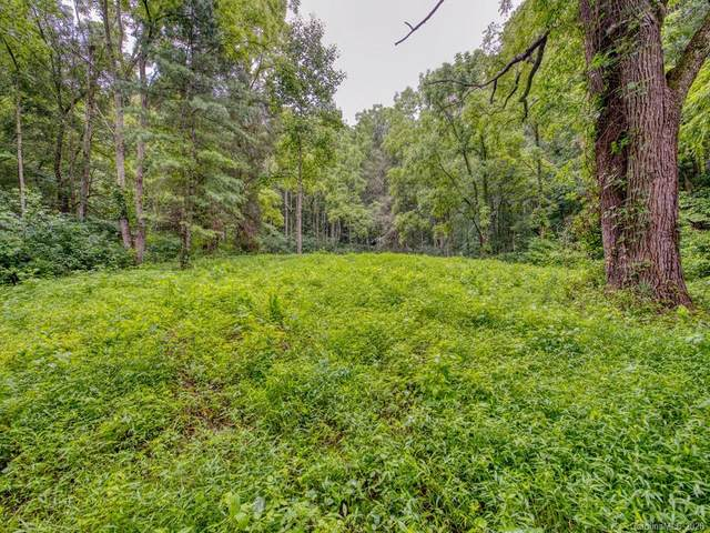 Lot #2 Mary Ruth Way, Clyde, NC 28721 (#3589527) :: Miller Realty Group