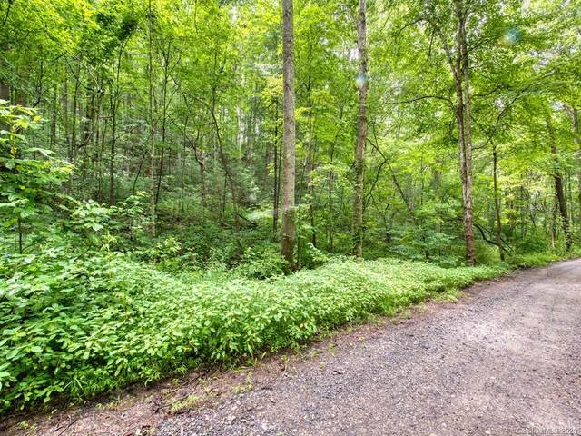 Lot #3 Mary Ruth Way, Clyde, NC 28721 (#3589555) :: Miller Realty Group