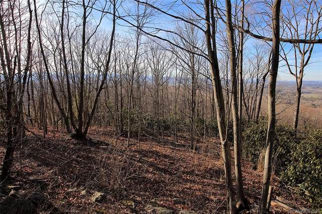 2.55 acres +/- Randy Drive, Hendersonville, NC 28791 (#3591004) :: Carolina Real Estate Experts
