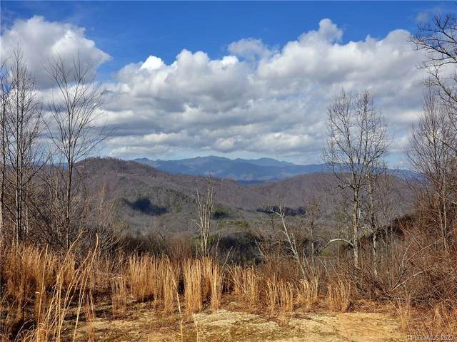 9999 Major Mountain Road, Black Mountain, NC 28711 (#3591640) :: SearchCharlotte.com