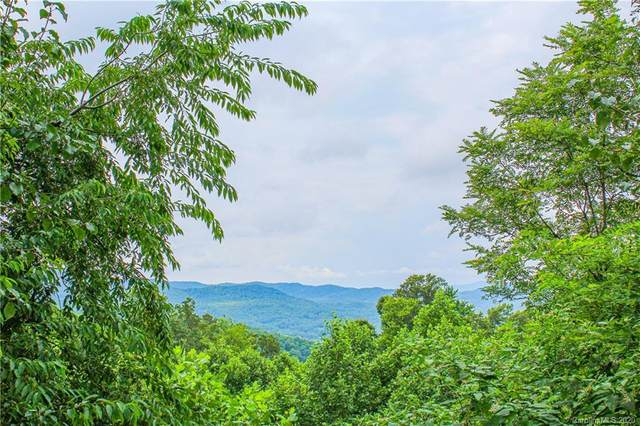 630 Somersby Parkway #1, Hendersonville, NC 28739 (#3591755) :: LePage Johnson Realty Group, LLC