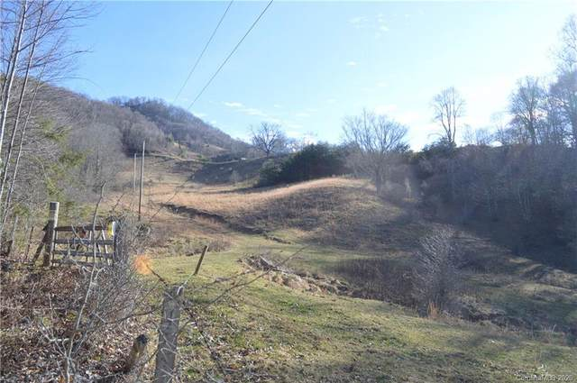00000 Jerdon Road, Clyde, NC 28721 (#3591810) :: LePage Johnson Realty Group, LLC