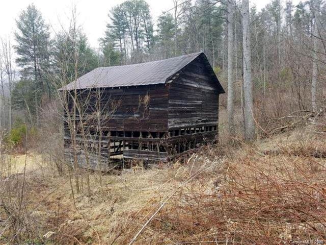149 Caldwell Branch Road, Hot Springs, NC 28743 (#3591880) :: Keller Williams Professionals