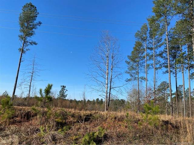 05 Reservation Road, Rock Hill, SC 29730 (#3592686) :: LePage Johnson Realty Group, LLC