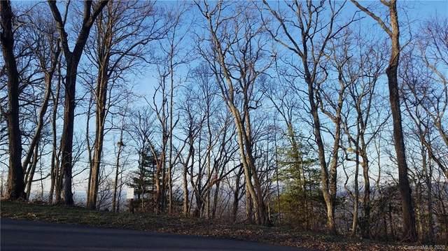 236 Serenity Ridge Trail, Asheville, NC 28804 (#3593148) :: Puma & Associates Realty Inc.