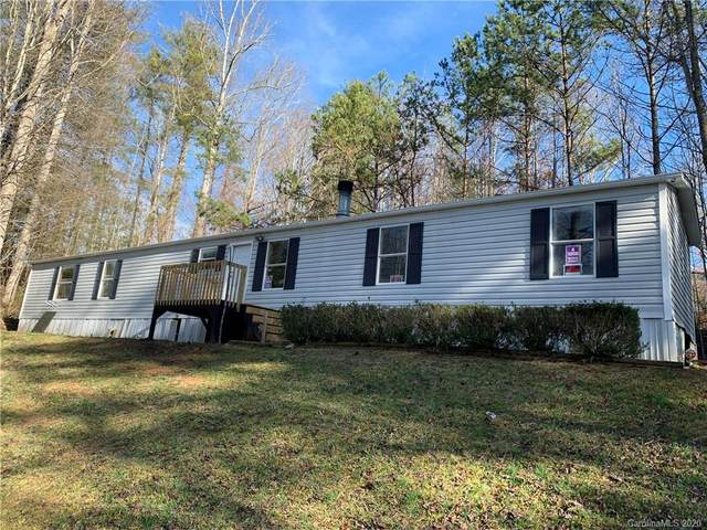161 Turkey Creek Drive, Leicester, NC 28748 (#3593583) :: LePage Johnson Realty Group, LLC