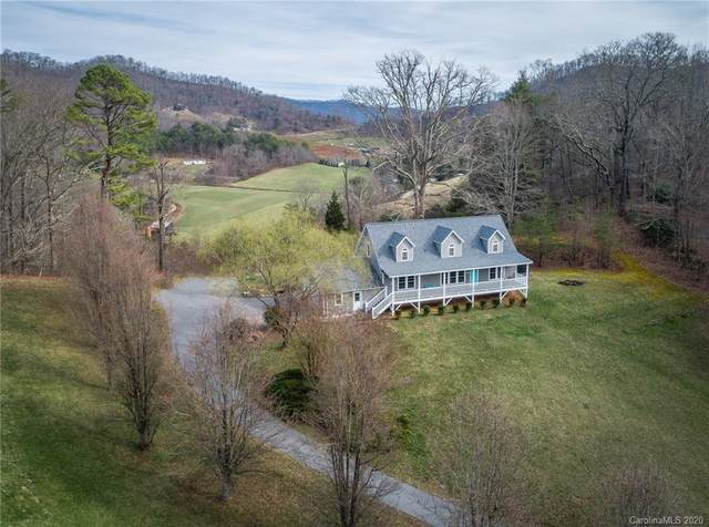 766 S Turkey Creek Road, Leicester, NC 28748 (#3593661) :: LePage Johnson Realty Group, LLC