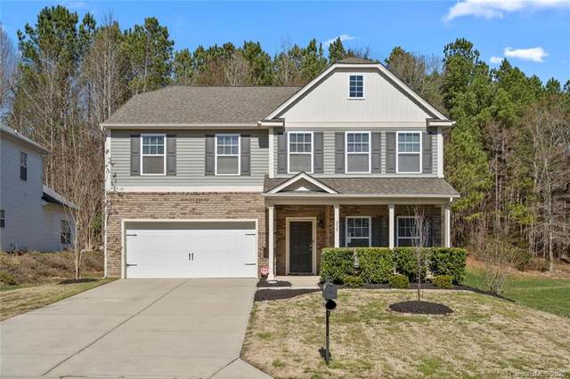 238 Mallard Head Drive, Rock Hill, SC 29732 (#3593768) :: Stephen Cooley Real Estate Group