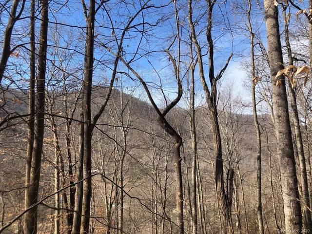 99999 Paint Fork Road, Barnardsville, NC 28709 (#3593891) :: MartinGroup Properties