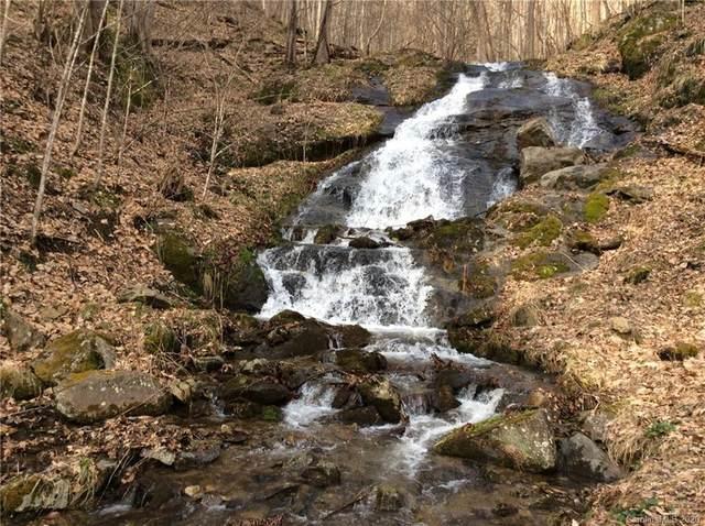 58 Twin Springs Trail #15, Hot Springs, NC 28743 (#3594551) :: Premier Realty NC