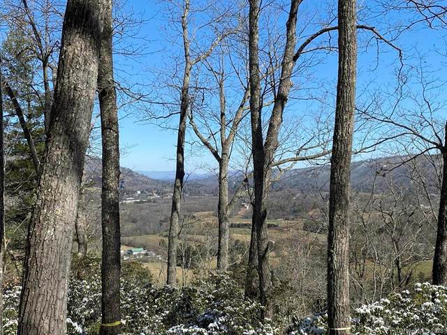 Lot 32 Reserve Road #32, Pisgah Forest, NC 28768 (#3594777) :: Carlyle Properties