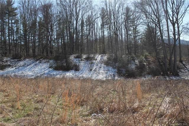 000 Bunny Run Road, Canton, NC 28716 (#3595905) :: LePage Johnson Realty Group, LLC