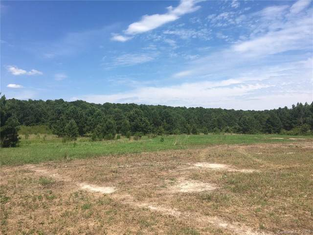 23 Acres Hwy 20 Highway, Lumber Bridge, NC 28537 (#3596273) :: The Premier Team at RE/MAX Executive Realty