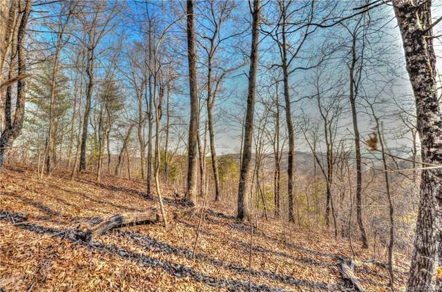 918 Overlook Park Drive #62, Hendersonville, NC 28792 (#3597107) :: Miller Realty Group