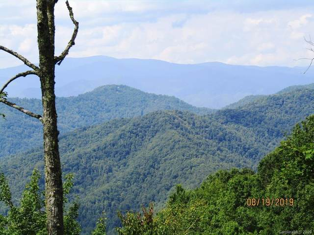 Lot #19 Persimmon Way #19, Bryson City, NC 28713 (#3597625) :: High Performance Real Estate Advisors