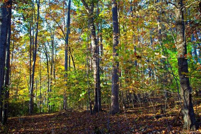 0000 Carolina Hills Drive, Hendersonville, NC 28792 (#3598176) :: Mossy Oak Properties Land and Luxury