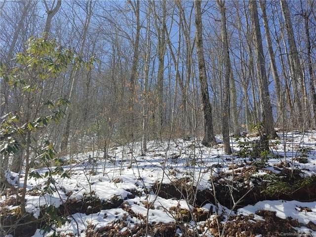 Lot L Hoot Owl Bill Road, Maggie Valley, NC 28751 (#3598271) :: Stephen Cooley Real Estate Group