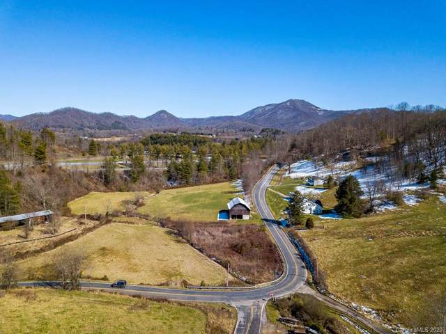 00 Mcelroy Cove Road, Waynesville, NC 28785 (#3598442) :: Keller Williams Professionals