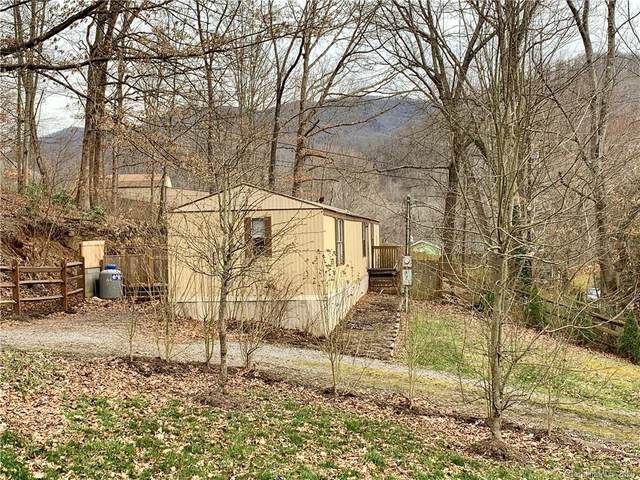 120 Red Road, Swannanoa, NC 28778 (#3599057) :: Stephen Cooley Real Estate Group