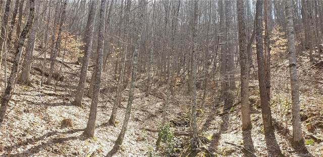927 Waccamaw Trail, Sylva, NC 28779 (#3600792) :: Mossy Oak Properties Land and Luxury