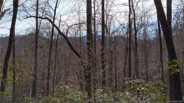 Lot 15 Crooked Creek Estates Drive #15, Old Fort, NC 28762 (#3600945) :: Austin Barnett Realty, LLC
