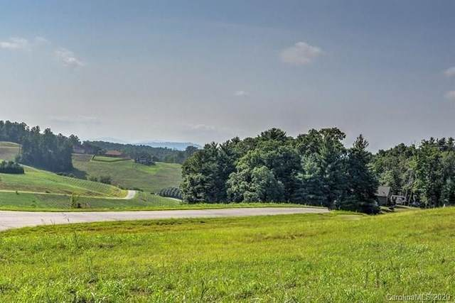 172 Israel Road #51, Leicester, NC 28748 (#3601633) :: Besecker Homes Team