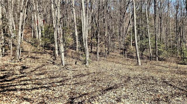 LT 8 & 9 Wildwood Dr Wildwood Drive Lot 8 & 9, Cullowhee, NC 28723 (#3601755) :: Stephen Cooley Real Estate Group