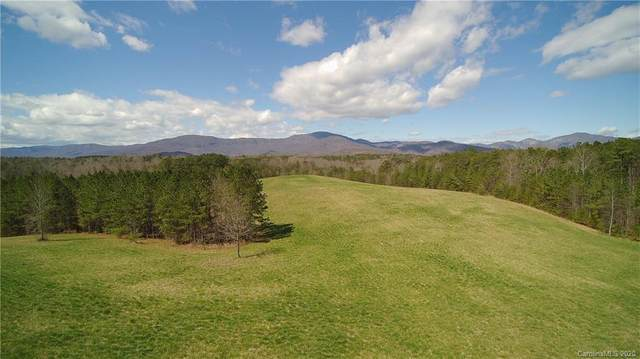 24.17 acres Walnut Falls Lane #16, Mill Spring, NC 28756 (#3601852) :: Homes Charlotte