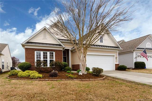 41065 Calla Lily Street, Indian Land, SC 29707 (#3602332) :: MartinGroup Properties