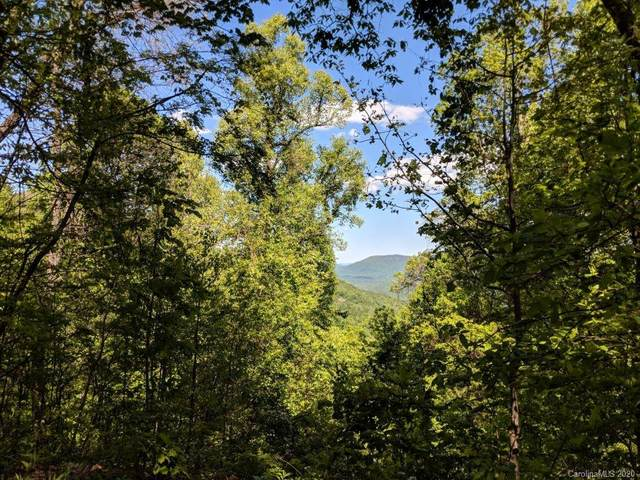 Lot C-11 28 Berry Lane C-11, Black Mountain, NC 28711 (#3603033) :: DK Professionals Realty Lake Lure Inc.