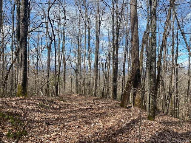 999 Green Meadow Lane, Brevard, NC 28712 (MLS #3604272) :: RE/MAX Journey