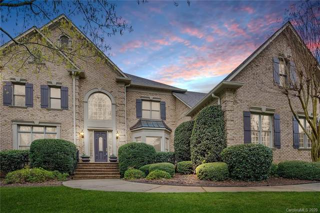 14406 William Davie Lane, Charlotte, NC 28277 (#3605519) :: Homes with Keeley | RE/MAX Executive