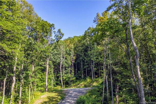 202 Hermitage Ridge, Waynesville, NC 28785 (#3605941) :: Mossy Oak Properties Land and Luxury