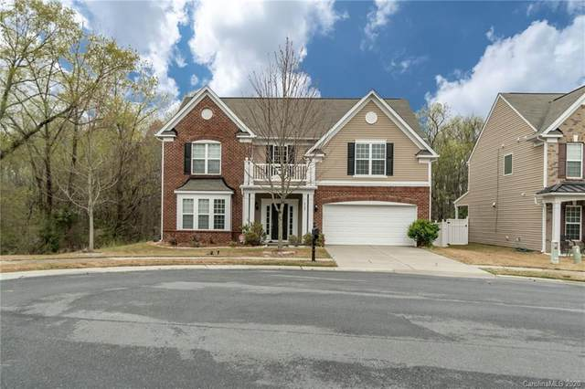 6507 Coral Rose Road, Charlotte, NC 28277 (#3607015) :: Ann Rudd Group