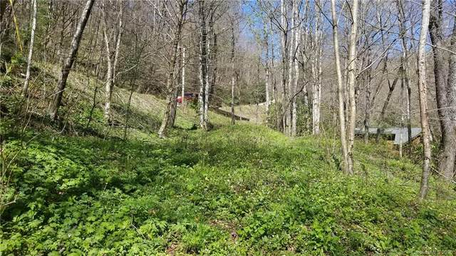 00 Mashstomp Road, Maggie Valley, NC 28751 (#3607311) :: LePage Johnson Realty Group, LLC