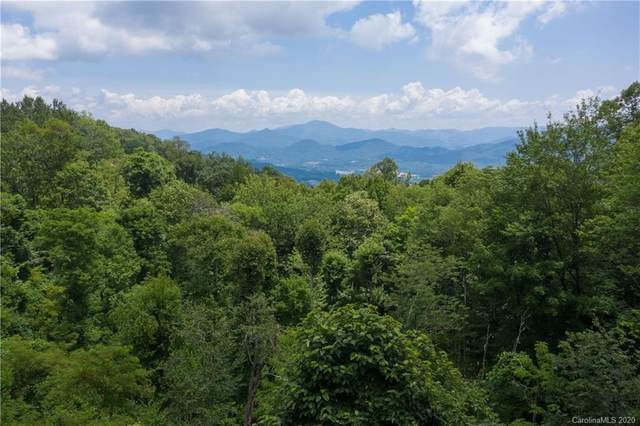 62.6 Acres Off Pot Leg Road, Waynesville, NC 28785 (#3608804) :: Roby Realty