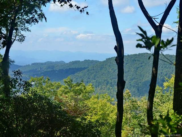 Lot 17 Big Level Drive #17, Asheville, NC 28804 (#3610173) :: Rinehart Realty
