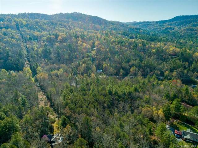 TBD Williamson Creek Road, Brevard, NC 28712 (#3610460) :: Advance Real Estate