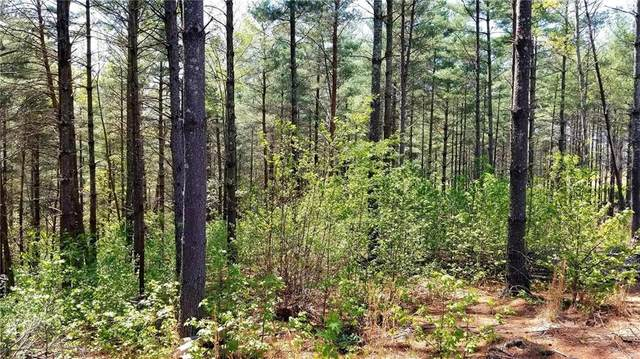 0 Pine Ridge Drive #48, Nebo, NC 28761 (#3611555) :: High Performance Real Estate Advisors