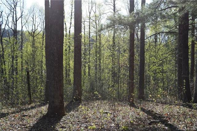Lot S - 1R Hollybrook Drive S - 1R, Flat Rock, NC 28790 (#3612636) :: Stephen Cooley Real Estate Group