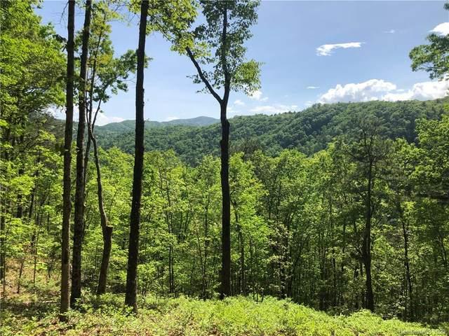 29 Wild Turkey Loop #29, Marshall, NC 28753 (#3612962) :: Carolina Real Estate Experts
