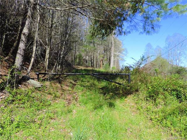 000 Rector Branch Road, Marshall, NC 28753 (#3612981) :: Carolina Real Estate Experts
