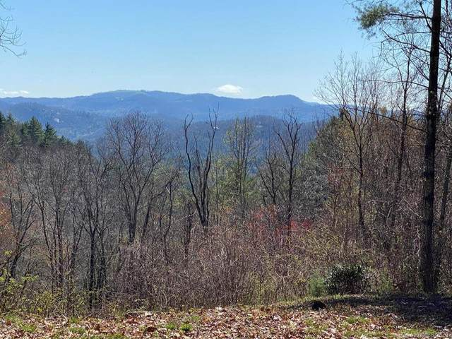 00 Salt Rock Road A & B, Cullowhee, NC 28723 (#3613002) :: LePage Johnson Realty Group, LLC