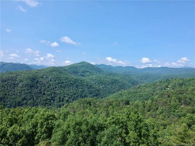 155 Turkey Trot Trail #17, Marshall, NC 28753 (#3613815) :: Stephen Cooley Real Estate Group