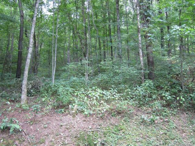 Lot 24 Tranquility Trail, Maggie Valley, NC 28751 (MLS #3614000) :: RE/MAX Journey