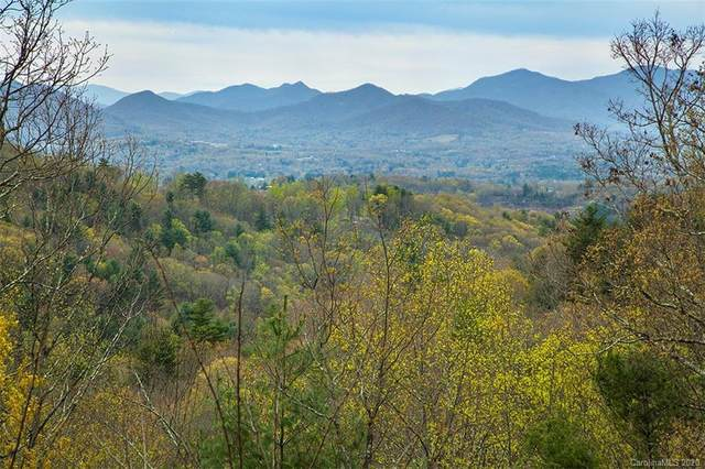 229 Starling Pass #107, Asheville, NC 28804 (MLS #3615999) :: RE/MAX Journey