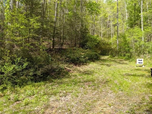TBD Flynn Branch Road, Marshall, NC 28753 (#3617292) :: LePage Johnson Realty Group, LLC