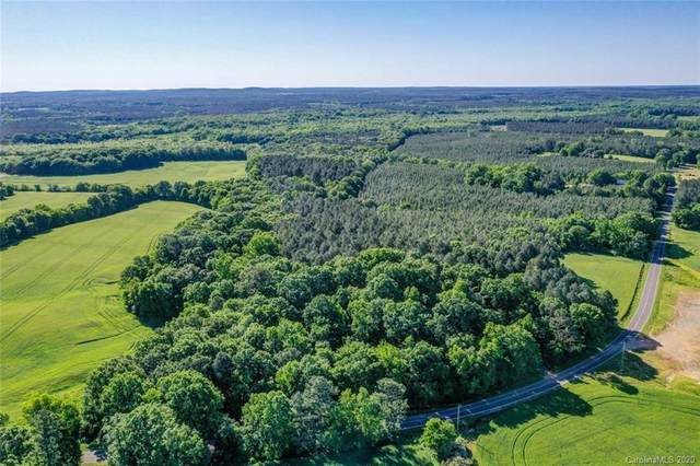 01246 Lower White Store Road, Peachland, NC 28133 (#3617922) :: Stephen Cooley Real Estate Group